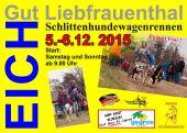 Schlittenhunde 2015